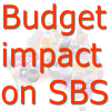 SBS funding business as usual